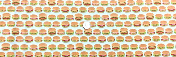 Hamburger stripes on white! All sorts of burgers. Perfect BBQ fabric. Chow Time by R. Kaufman 19785 202 - Fabric by the yard