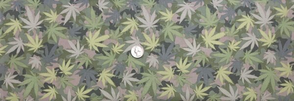 Cannabis camo in pale greens and tans. Grass by Stella 1725 - Fabric by the yard
