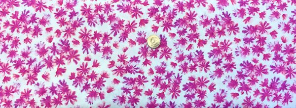 Tiny flowers in pink and purple all over white. Breezy Blooms. Blooming Beauty by Kanvas Studio 07817 - Fabric by the yard