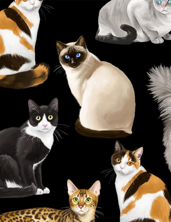 Exotic house cats! Calico. Chocolate by Timeless Treasures C8050 - Fabric by the yard.